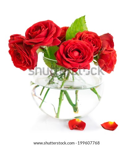 Bunch red roses in glass vase. Isolated on white background - stock photo