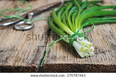 bunch spring onions, tied with twine with iron scissors on textured background