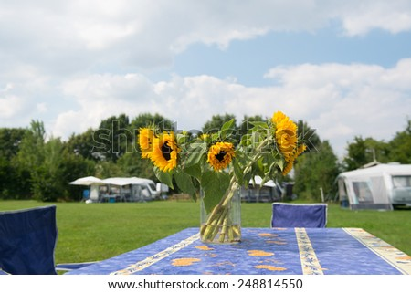 Bunch sunflowers in vase at campsite - stock photo
