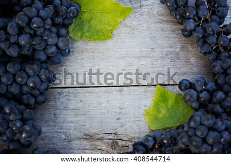 Bunches of dark grapes on a wooden table - stock photo