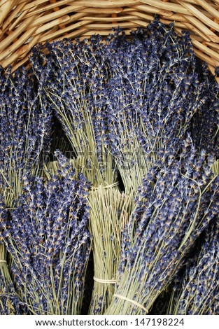 Bunches of dried lavender flowers for sale in Provence, France