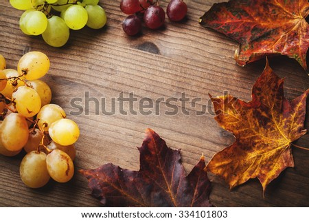 bunches of grapes and leaf