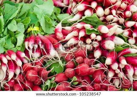 Bunches of radishes at a farmers' market