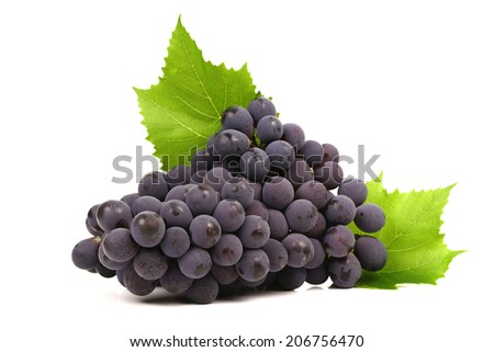 bunches of ripe grapes and green grape leaf on a white background close-up