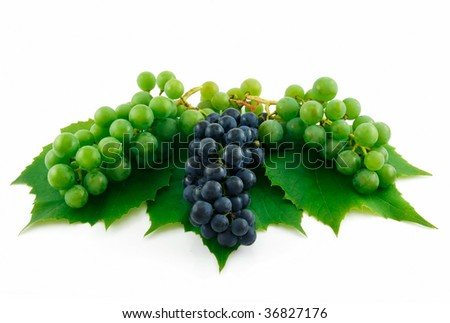 Bunches of Ripe Green and Blue Grapes with Leaf Isolated on White Background