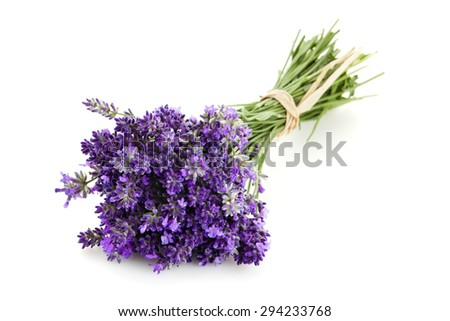 Bundle of Lavender flowers on white background