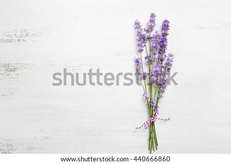 Bundle of lavender on old wooden board painted white. - stock photo