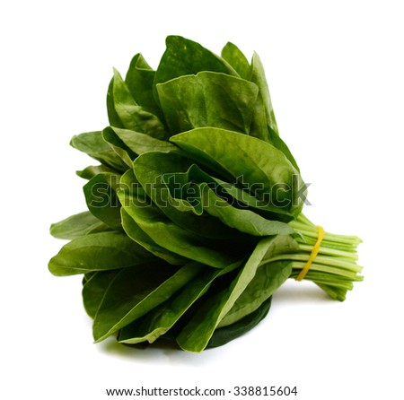 bundle of spinach isolated on white  - stock photo