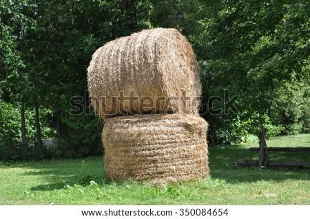 Bundled haystack - stock photo