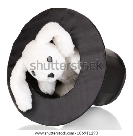 Bunny and black cylinder isolated on white