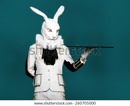 Bunny standing in white suit on gray background holding tray - stock photo