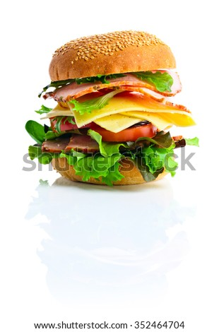 burger isolated on a white reflexive background