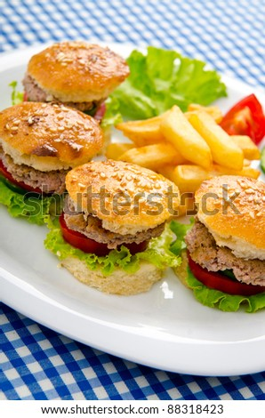 Burgers with french fries in plate - stock photo