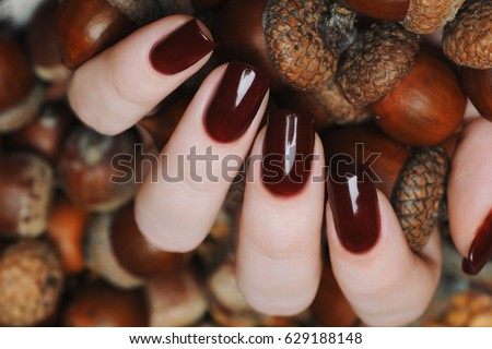 Burgundy Color Stock Images Royalty Free Images Amp Vectors
