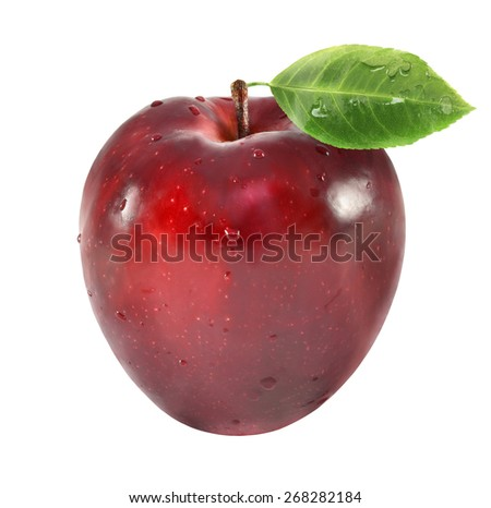 burgundy ripe apple with water drops on white background 