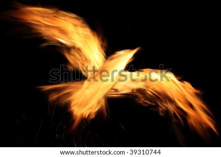 burn phoenixl on the black background - stock photo