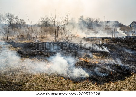 Burned grass near the village. - stock photo