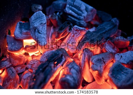 Burning campfire embers (hot coal) - stock photo