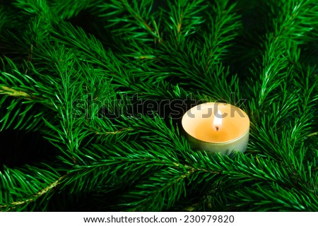 Burning candle and gold balls amongst green fir branches - stock photo