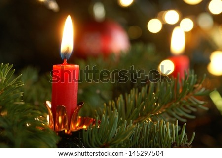 Burning candle on Christmas tree. - stock photo