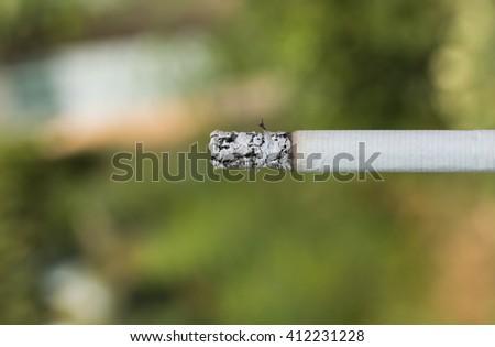 burning cigarette on green background - stock photo