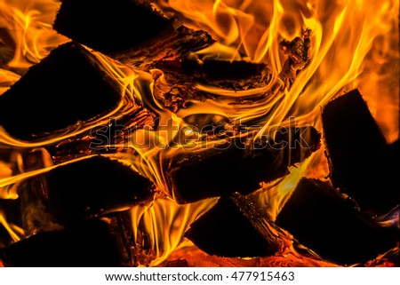 burning coals, firewood in the fireplace, closeup