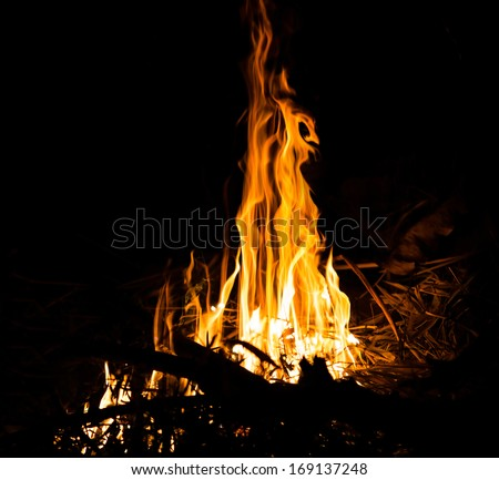 Burning fire abstract at night - stock photo