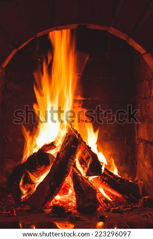 Burning fire in the brick fireplace, close up