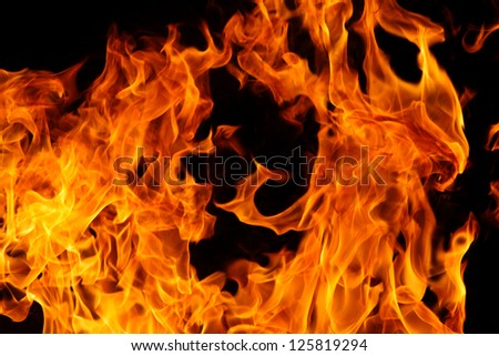 Burning fire or flame - stock photo
