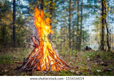 burning fire outdoor  - stock photo