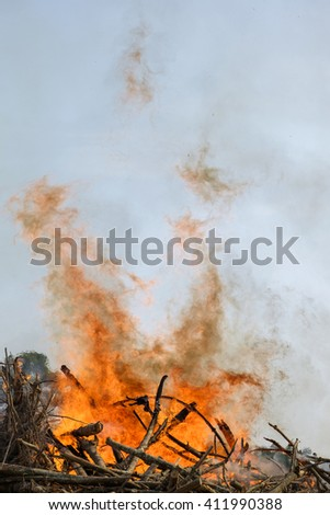 burning fire wood. - stock photo