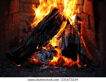 Burning fire wood in a fireplace - stock photo