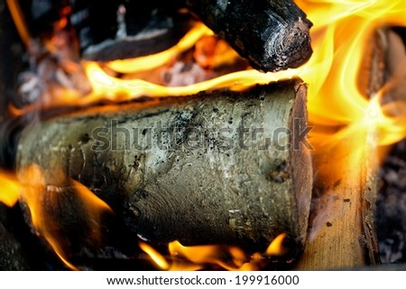 Burning fire wood in the fire - stock photo