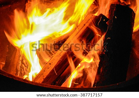 Burning Firewood at a Campground