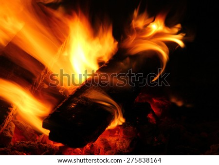 Burning firewood close-up