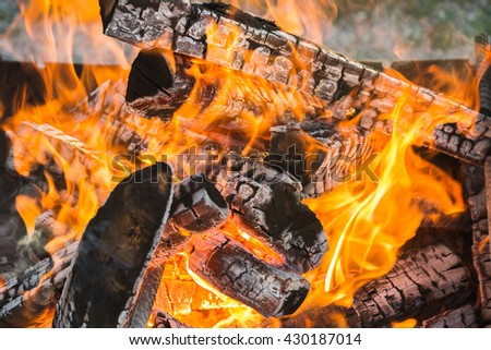 Burning firewood in fireplace