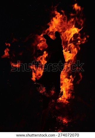 Burning flame - stock photo