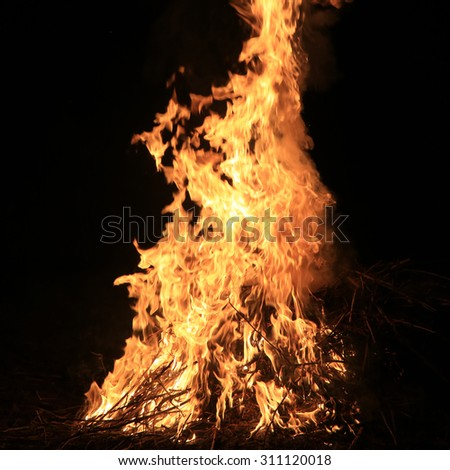 burning grass on a black background
