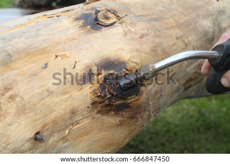 burning knots on wood log
