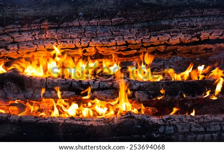 Burning logs in the bonfire. Close up. - stock photo