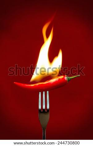 Burning red chili peper - stock photo