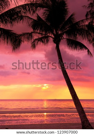 Burning Skies Fiery Backdrop - stock photo