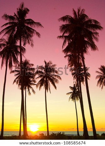 Burning Skies Idyllic Wallpaper - stock photo
