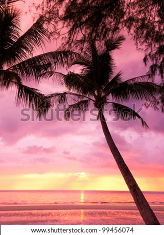 Burning Skies Sunset Divine - stock photo