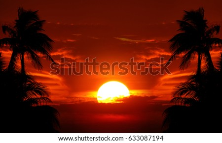 Burning sky behind palm-tree silhouettes with sun in distance