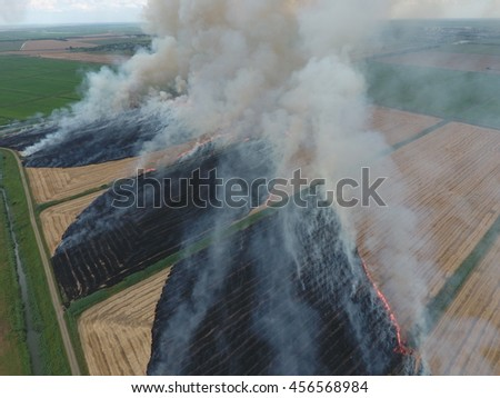 Burning straw in the fields after harvesting wheat crop - stock photo