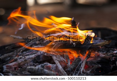 Burning wood with red orange fire and white smoke