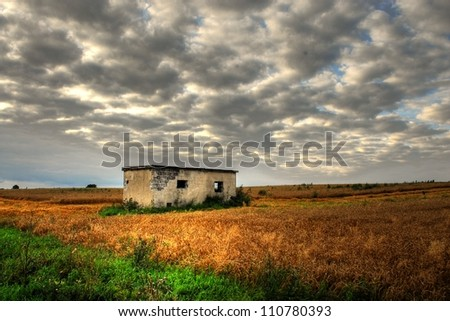 Burnt small house among fields