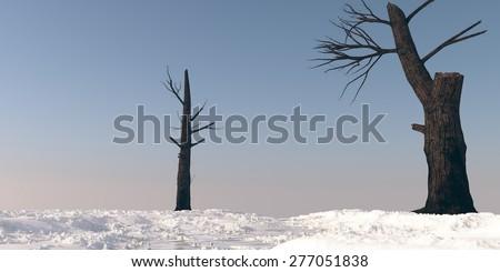 burnt trees on snowy terrain - stock photo