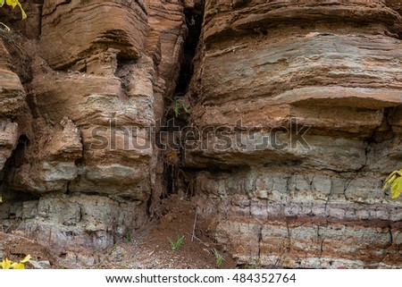 Burrows and holes in the rock of sandstone, clay and limestone